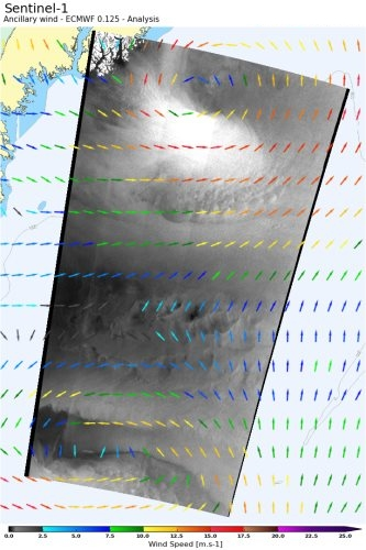 Two neighboring polar lows caught off the coast of Greenland by the Extended Wide swath mode of Sentinel-1 on 2015/10/05 at 08H47. The image roughness, a proxy for the ocean surface wind speed, is represented in shades of grey. It is overplot with colored vectors indicating the surface wind field from ECMWF. Credits: S1 data from ESA, Analyzed by CLS